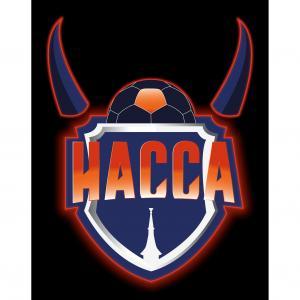 Logo HANDBALL Association Condruzienne Ciney Assesse